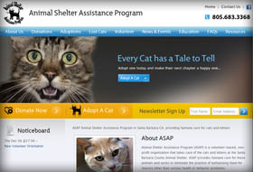 animal shelter assistance program website portfolio